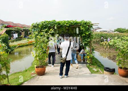 Reisende thai Menschen zu Fuß besuchen und Foto mit Shopping Produkt bei Gemüse- und Flora Festspiele am 19. November - Stockfoto