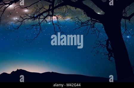 Die milchstrasse am Nachthimmel und toten Baum, Fantasy Landschaft Hintergrund. - Stockfoto