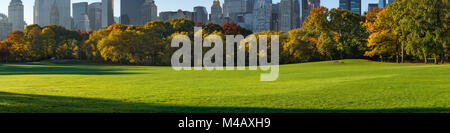 Panoramablick auf den Central Park South Schafe Wiese in der frühen Morgensonne. Manhattan, New York City - Stockfoto
