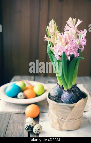 Rosa Hyazinthe, Ostern bunt und Wachteleier Stockfoto