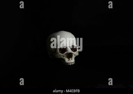 Menschliche Schädel in low-key-Einstellung Stockfoto, Bild ...