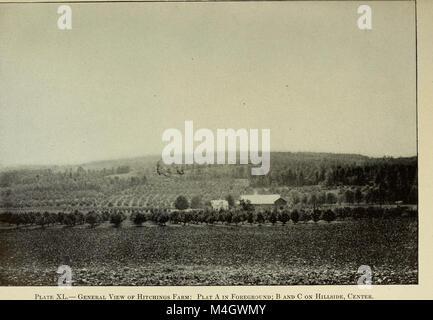 Jahresbericht des Vorstands der Kontrolle der New York landwirtschaftliche Experiment Station (1914) (14595294837) - Stockfoto