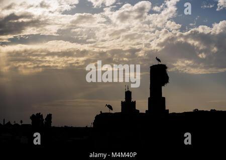 Silhouette von zwei störche auf einem Schornstein mit Wolken im Hintergrund - Stockfoto