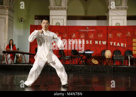 Chicago, USA. 16 Feb, 2018. Ein Künstler führt Tai Chi am Chicago Cultural Center in Chicago, USA, Nov. 16, 2018. - Stockfoto