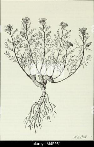 Budd's Flora der kanadischen Prärieprovinzen (1987) (20232380588)