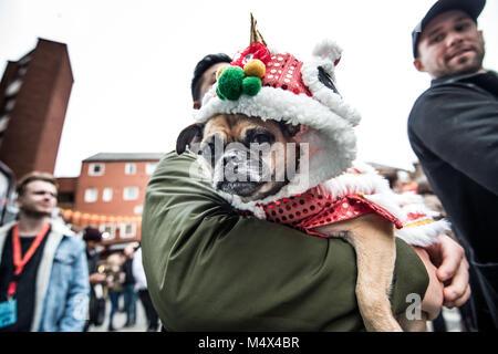 London, Großbritannien. 18 Feb, 2018. Eine Bulldogge in Chinatown gesehen wie die Leute das Jahr des Hundes feiern. - Stockfoto
