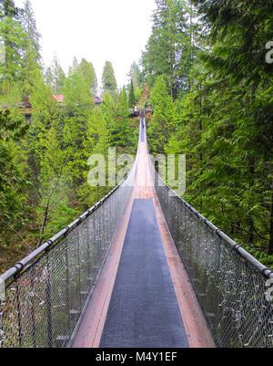 Capilano Suspension Bridge, Kanada - Stockfoto