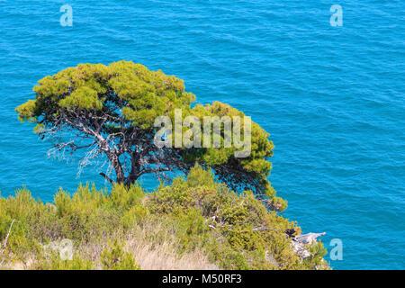 Sommer Bogen von San Felice, Italien - Stockfoto