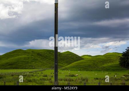 Pulsierende grüne Wiesen mit weidenden Schafe in einer wunderschönen Neuseeland Landschaft - Stockfoto
