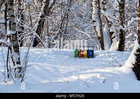 Eine Reihe von vier bunte Mülleimer in Winter Park. Halten Sie die Natur sauber. Verschneite Bäume, niemand um - Stockfoto