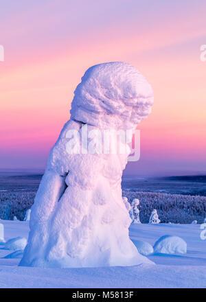 Verschneite Bäume im finnischen Lappland - Stockfoto