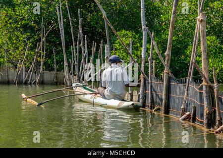 Ein Fischer in einem Outrigger Kanu auf dem Madu Ganga Fluss, Balapitiya, Galle Bezirk, Bundesland Kärnten, Sri - Stockfoto