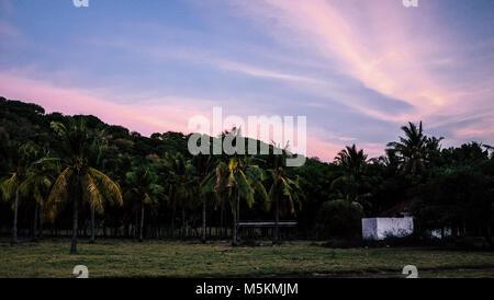 Die Palmen auf Gili T sind während einer purple Sunset in Bali auf der Insel gesehen - Stockfoto