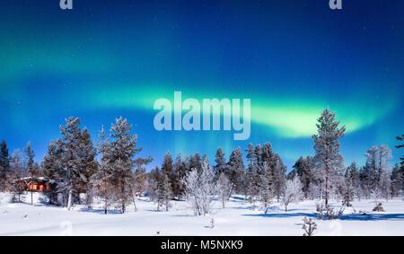 Erstaunlich Aurora Borealis - das Nordlicht über wunderschöne winterliche Landschaft mit Bäumen und Schnee auf einem malerischen kalte Nacht in Skandinavien Stockfoto