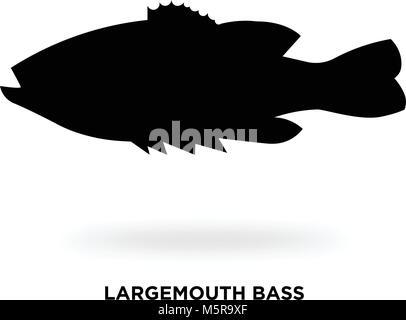Schwarz / Weiß Cartoon Illustration von Thunfisch Fisch Meer Leben ...