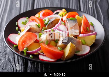 Fisch Salat: geräucherte Makrele mit Kartoffeln, Radieschen, Zwiebeln und Tomaten close-up auf einem Teller auf - Stockfoto