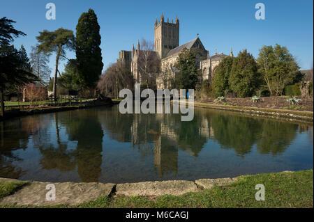 Wells Cathedral und Wells Pools im Garten des Palastes des Bischofs, Wells, Somerset, UK. - Stockfoto