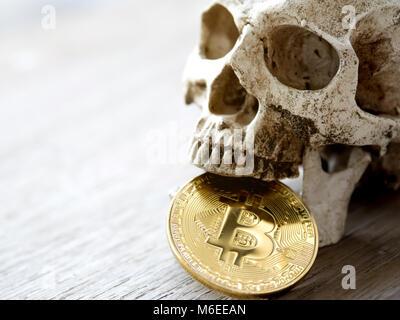 Nahaufnahme von Schädel beißen Golden bitcoin auf hölzernen Tisch. Das Konzept der Investition von bitcoin und cryptocurrency. - Stockfoto