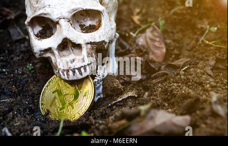 Nahaufnahme von Schädel beißen Bitcoin im trockenen Blätter auf dem Boden und der Seite des Schädels und des Goldenen - Stockfoto