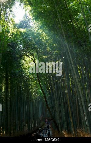 Menschen besuchen und Wandern im Bamboo Forest in Arashiyama, Kyoto, Japan - Stockfoto
