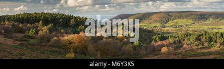 Herbst Farben auf Luccombe Hügel mit Bossington Hill, selworthy und den Bristol Channel jenseits, Exmoor, Somerset, - Stockfoto