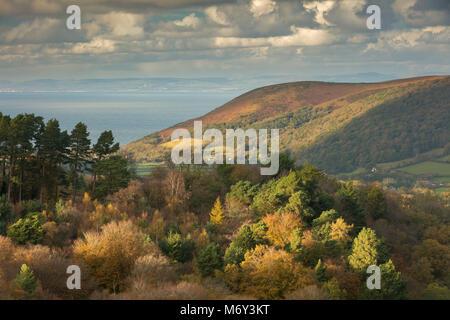 Herbst Farben auf Luccombe Hügel mit Bossington Hill, den Kanal von Bristol und Wales jenseits, Exmoor, Somerset, - Stockfoto