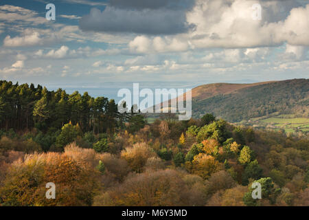 Herbst Farben auf Luccombe Hügel mit Bossington Hill und den Bristol Channel jenseits, Exmoor, Somerset, England, - Stockfoto