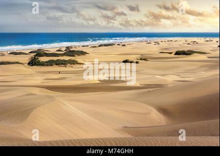 Sanddünen im berühmten natürlichen Strand von Maspalomas. Gran Canaria, Kanarische Inseln, Spanien - Stockfoto