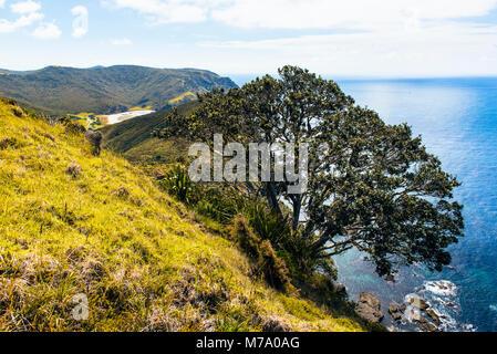Küste östlich von Tapotupotu Bay (im Abstand glimpsed), in der Nähe von Cape Reinga, North Island, Neuseeland - Stockfoto