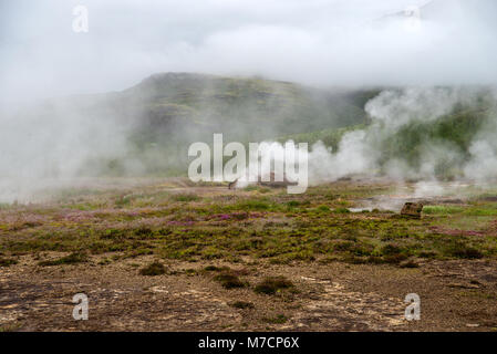 Blick auf eine Wiese mit Dampfenden Thermalquellen, Tal Haukadalur im südlichen Island - Stockfoto