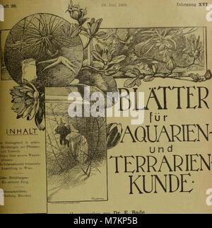 Blätter für Aquarien- und Terrarien-Kunde (1905) (20200932559) - Stockfoto