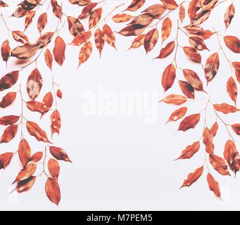 herbst blumen rahmen aus bunten ahorn und eiche bl tter und fading apricot und gelb rosen auf. Black Bedroom Furniture Sets. Home Design Ideas