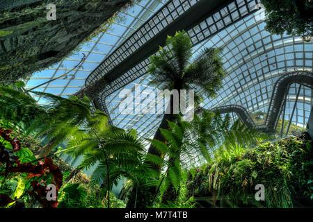 Cloud Forest Kuppel in den Gärten an der Bucht - Stockfoto