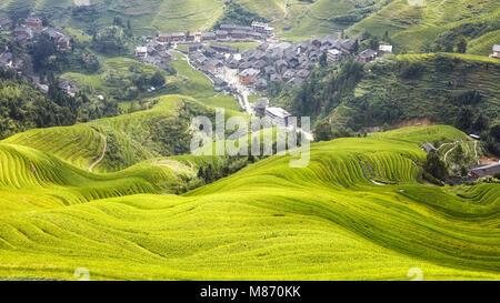 Longji Reisterrassen Landschaft, Longsheng County, China. - Stockfoto