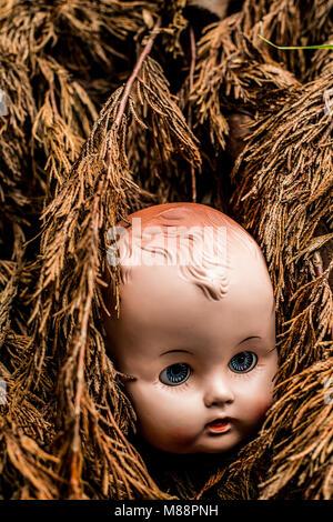 Alte Kunststoff Puppe im Wald verloren. - Stockfoto