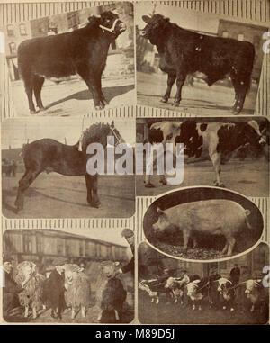 Farmer's Magazin (Januar-Dezember 1920) (1920) (14782413805) - Stockfoto