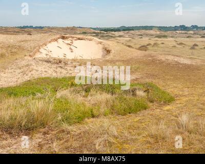 Dünen von Hatainville, sonnigen Tag im Sommer in der Normandie, Frankreich - Stockfoto
