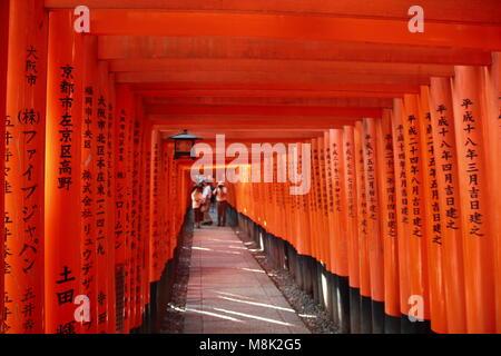 Tausende von Vermilion torii Gates in Fushimi Inari Schrein, Kyoto, Japan. Fushimi Inari Schrein ist der Kopf, der - Stockfoto