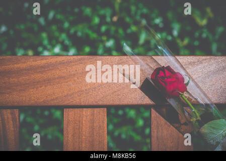 Eine einzelne Rose auf ein Denkmal Bank in einem Friedhof mit Kopie Raum - Stockfoto