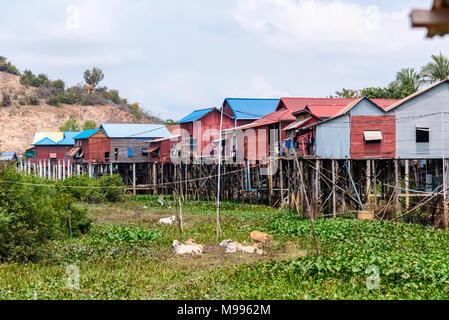 Häuser aus Wellblech auf hölzernen Stelzen in einem armen, ländlichen Dorf mit einem Feldweg Straße in Kambodscha. - Stockfoto