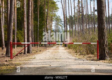 Eine Sperre auf einem Waldweg mit Bäumen und einem Hintergrund in den Himmel - Stockfoto
