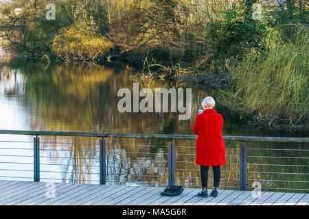 Rückansicht einer Frau trägt einen roten Mantel, stehend auf einem Holzsteg über einen Fluss im Wald und auf Ihrem Smartphone. - Stockfoto