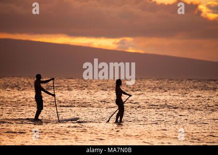 Eine männliche und weibliche auf Stand up Paddle Boards genießen Sie einen traumhaften Sonnenuntergang mit dem Insel Lanai im Hintergrund aus Maui, Hawaii, USA. - Stockfoto