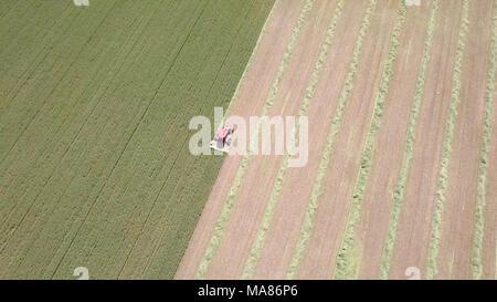 Luftaufnahmen von Red Harvest kombinieren ein grünes Weizenfeld - Stockfoto