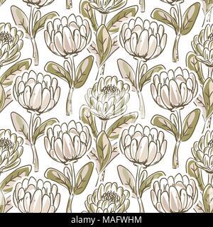 Hand Protea Blume nahtlose Vektor Muster gezeichnet. - Stockfoto