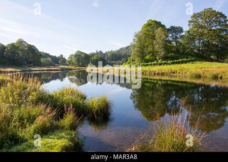 Fluss Brathay, Elter Wasser, Lake District, UNESCO-Weltkulturerbe, Cumbria, England, Vereinigtes Königreich, Europa - Stockfoto
