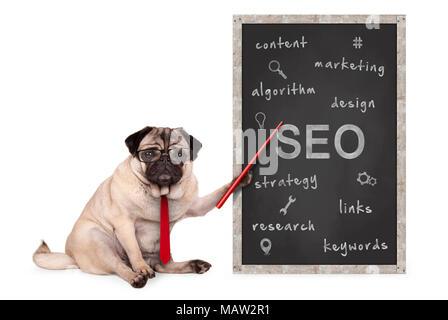 Business mops Hund halten roten Zeiger, Suchmaschinenoptimierung, SEO, Performance Strategie, Hand gezeichnet am Schwarzen Brett, isoliert auf weißem - Stockfoto