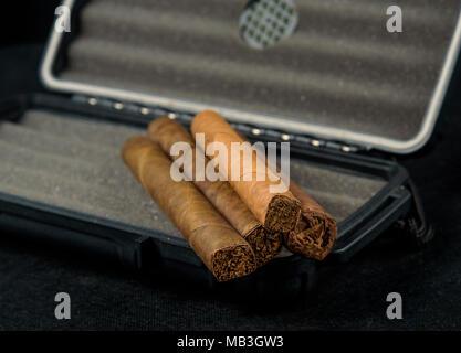 Zigarren auf einem schwarzen travel Humidor. Reich riechen und Texturen der Tabakblätter - Stockfoto