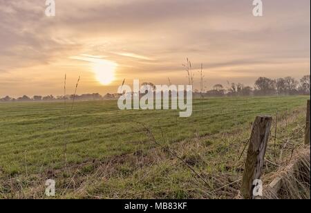 Dämmerung fällt auf einen neu bepflanzt. Die Sonne ist prominent in der dramatischen Himmel und Holzzaun Beiträge stehen im Vordergrund. - Stockfoto