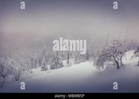 Eine Winterlandschaft auf dem Brocken in der Nähe von Schierke - Stockfoto